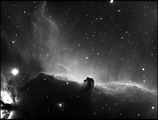 Horse Head Nebula in Ha