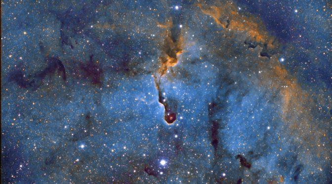 Capturing the Elephant Trunk Nebula